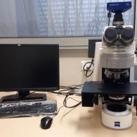 Microscopie optique